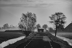 they are coming (Wöwwesch) Tags: bikes mist morning trees netherlands cycle route blackwhite