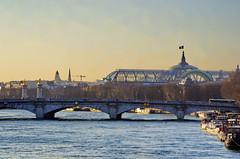 479 Paris en Février 2018 - La Seine au Pont de la Concorde, avec le Grand Palais (paspog) Tags: paris france seine rivière river fluss février februar february 2018 pont bridge brücke pontdelaconcorde grandpalais