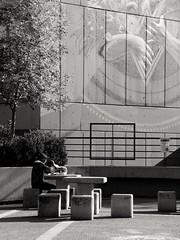 Searching for Something To Read (José Miguel S) Tags: streetphotography urbanlandscape urban urbanexploration mexicocity ciudaduniversitaria unam facultaddecienciaspolíticasysociales student people fotografíaenblancoynegro blackandwhite