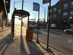 box of sunlight (KevinIrvineChi) Tags: bus stop mini mart montrose avenue sun morning winter 2018 road sidewalk pavement box streetlight iphone iphone7 sunlight sunny glass tow zone sign 78 garbage can trash refuse storefronts apartment buildings brick cars commuters albany park albanypark pole blue sky shadows long