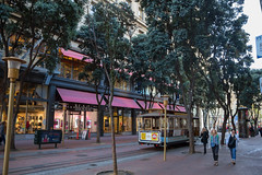 San Francisco Morning (- Erdenebileg Bat-Erdene -) Tags: sf california san francisco morning casual street tram commute