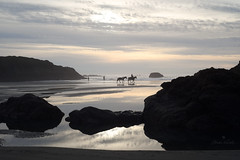 travelers through a changing world (Claudia Künkel) Tags: oregon sunset meyersbeach horse beach pacificocean rider coast lowtide