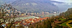 Heidelberg (Rnoltenius) Tags: heidelberg river houses bridges picturesque rooftops mist fog mountain atmosphere