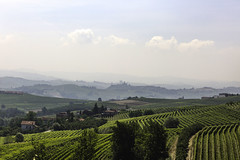 Terre del Barolo_Y3A9440 (candido33) Tags: barolo lamorra paesaggidelvino piemonte serradenari alba aurora filari vigne vigneti vitigni