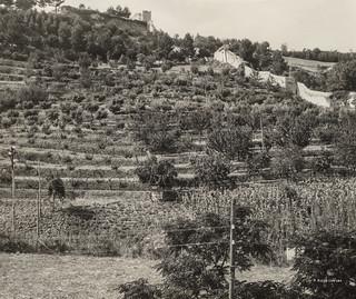Ascoli com'era: una vista sulla Fortezza Pia e mura di cinta (193?)