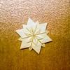 ʕ •ᴥ•ʔ (guangxu233) Tags: origami origamiart paperart paperfolding paper art 手作り 折纸 折り紙作品 折り紙 flower tomokofuse