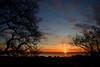 Alba Civitanovese (luporosso) Tags: natura nature naturaleza naturalmente nikonitalia nikond500 alba sunrise silhouette siluetas alberi trees marche mare sea sole sun adriatico civitanovamarche italia italy nuvole clouds cloud cielo sky