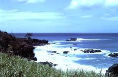 Waimea Bay (moacirdsp) Tags: waimea bay haleiwa honolulu county o'ahu hawaiʻi hawaii usa 1978