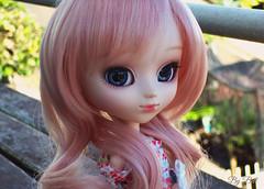 Susanne (♪Bell♫) Tags: pullip alice du jardin susanne rosenthal groove doll happy birthday