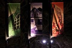 Red Deer Banners (Bracus Triticum) Tags: night red deer banners レッドディア アルバータ州 alberta canada カナダ 11月 十一月 霜月 jūichigatsu shimotsuki frostmonth autumn fall 平成29年 2017 november