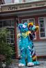 DSC_0224 (BerionHusky) Tags: fursuit mascot costume monschau furry fur