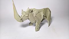 Rhino - designed by Nguyễn Tuấn Tài (Nguyễn Tuấn Tài) Tags: