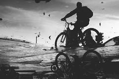 Reflejos urbanos (Pablouno) Tags: urban reflection reflejo bw blancoynegro blackandwhite biker city monochromatic monocromatico bicycle bicicleta bogotá