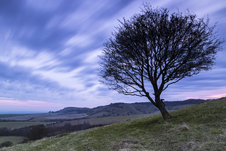 Pitstone Hill to Ivinghoe Beacon Dawn