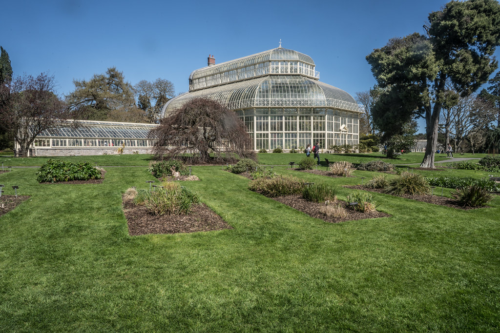 VISIT TO THE NATIONAL BOTANICAL GARDENS [GLASNEVIN DUBLIN]-138528