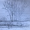 IMG_8986 (dnassler) Tags: drawing wate lake lesliespit shore tree path