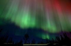 Corona (Katy on the Tundra) Tags: corona northernlights auroraborealis nightsky
