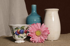 untitled (N.the.Kudzu) Tags: home tabletop stilllife coffee cup pottery jug pink flower canon70d