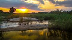 Kruger National Park (Harold Brown) Tags: brook creek krugernationalpark krugerpark landscape mpumalanga outdoor republic river sky southafrica stream summer sunset travel twilight water bhagavideocom clouds haroldbrowncom harolddashbrowncom photosbhagavideocom haroldbrown