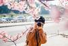 Aubrey|Cherry blossom (里卡豆) Tags: 台北 台北市 台灣 tw olympus penf 25mm f12 pro olympus25mmf12pro