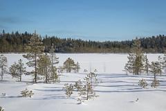 Soljanen (Markus Heinonen Photography) Tags: seitseminen seitsemisen kansallispuisto nationalpark national park suo mire mosse soljaset soljanen suomi finland luonto nature maisema landscape pirkanmaa kirkassoljanen