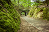 2016-05-17 _ Sever do Vouga _ 18 (Luis Cap) Tags: aveirod constructions portugal roads severdovouga trail tunnel