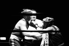 22026 - Hook (Diego Rosato) Tags: boxe boxing night ring palaboxe boxelatina bianconero blackwhite rawtherapee nikon d700 70200mm sigma hook gancio pugno punch