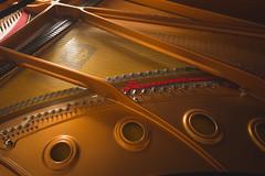 Piece of art (Jyrki Salmi) Tags: jyrki salmi yamaha c7 flygel grand piano