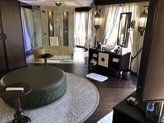 The Ritz Carlton, Ras Al Khaimah, Al wadai desert 72 (Travel Dave UK) Tags: theritzcarlton rasalkhaimah alwadaidesert