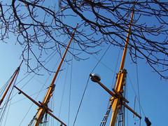 Vilma Masts at Albert Dock, Liverpool, England (teresue) Tags: 2017 uk unitedkingdom greatbritain england merseyside liverpool albertdock tallship masts canningdock pumphouse vilma
