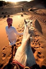 Desert Ride (Neelima Muneef) Tags: desert horse ride sunset uae arabianhorse arabianlife dunes