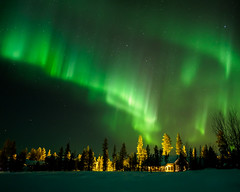 Northern Lights II (_hq_) Tags: aurora auroraborealis northernlights revontulet night sky trees lapland finland