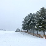 Winter Slumber thumbnail