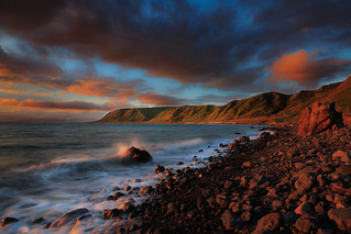 Palliser Bay Coastline