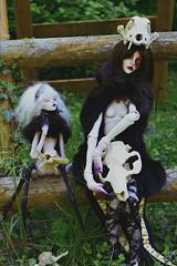 Family portraits (Emese's Dolls) Tags: bjd doll creepy photography dollchateau