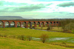 Whalley rail viaduct (Tony Worrall) Tags: england regional region area northern uk update place location north visit county attraction open stream tour country welovethenorth nw northwest britain english british gb capture buy stock sell sale outside outdoors caught photo shoot shot picture captured whalley viaduct train landscape countryside crossing arches plain travel aqueduct