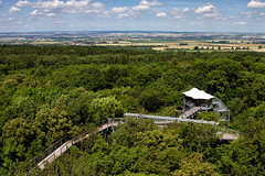 Canopy walkway (uhx72) Tags: germany thuringia thüringen landscape summer sky clouds walkway forest hainich nationalpark