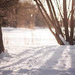 Alice in winterwonderland thumbnail