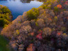 Forest Rebirth (Noel Alvarez1) Tags: drone dji aerial nj new jersey landscape phantom 3 standard spring