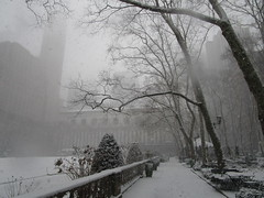 2018 Late March Blizzard Snow Storm 03/21/2018 NYC 8522 (Brechtbug) Tags: 2018 late march blizzard snow storm bryant park library near times square broadway 42nd st nyc 03212018 new york city midtown manhattan snowing storms snowstorm winter weather building fog like foggy fortysecond street nemo southern view ny1snow