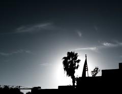 Grand Old Flag DSCF4162 (Merkwürdiglieben) Tags: san diego california