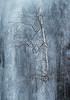 Harsh conditions (Arnt Kvinnesland) Tags: ice spring cold birch frozen outdoor is bjørk vår vinter mars brattlandsdalen suldal norway