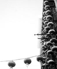 SF Chinatown (RolleiQueer) Tags: rolleicordvb film 120 bw analog darkroom sanfrancisco chinatown lanterns