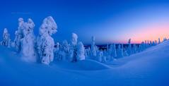 Blue hour (M.T.L Photography) Tags: riisitunturi bluehour mtlphotography mikkoleinonencom winter sky snow heavysnow tykky ice lake posio finland lapland nikond810 night panoramicphotography