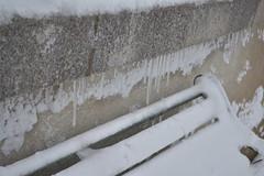 DSC_8034 (seustace2003) Tags: baile átha cliath ireland irlanda ierland irlande dublino dublin éire glencullen gleann cuilinn st patricks day zima winter sneachta sneg snijeg neve neige inverno hiver geimhreadh