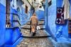 Kozmic Blues (hapulcu) Tags: chaouen chefchaouen maghreb maroc marocco marokko marruecos morocco xauen hiver invierno شفشاون ⴰⵛⵛⴰⵡⵏ