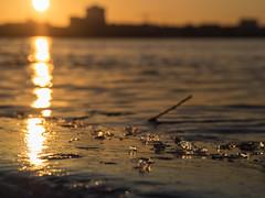 Sunset Lake (Torsten schlüter) Tags: deutschland hamburg alster sunset eis sonne sonnenuntergang wasser olympus 45mm 2018