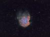 The monkey head nebula (Timotheus250) Tags: nebula monkey head stars astronomy astrophotography takahashi astro nevel dark sky remote netherlands sho narrowband