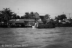 Mekong Delta (CATDvd) Tags: catdvd davidcomas httpwwwdavidcomasnet httpwwwflickrcomphotoscatdvd september2017 cộnghòaxãhộichủnghĩaviệtnam repúblicasocialistadevietnam repúblicasocialistadelvietnam socialistrepublicofvietnam việtnam vietnam nikond70s barca boat rio riu river deltadelmekong đồngbằngsôngcửulong cantho cầnthơ mekongdelta