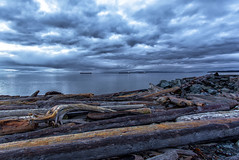 Logs (Paul Rioux) Tags: morning clouds daybreak outdoors ocean sea water waterfront seascape seashore logs driftwood scenic calm reflection blue prioux cloud cover weather beach esquimalt lagoon ships vessels freighters